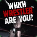 世界摔角娱乐测验 WWE Wrestler Quiz