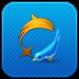 Dolphin Tweet