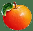 水果百科大全