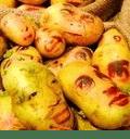 土豆的做法