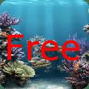 我的免费的个人水族馆