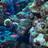 海底世界02