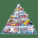 Calories fats