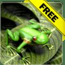Froggy Free