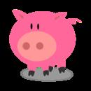 愤怒的猪猪