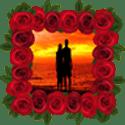 玫瑰花相框