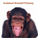 Animal Sounds Fun for kids