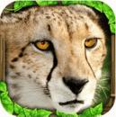 猎豹模拟 Cheetah Simulator