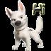 动物语言-狗