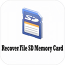 Recover File SD Memory C...