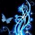 Beautiful Butterfly Live Wallp