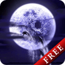 Dolphin Fullmoon Trial