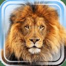双人游戏—动物