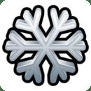 Ski Timer