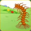 蜈蚣和蚂蚁