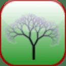 Arbor Lite - SAT Vocab