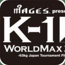K-1世界最大冠军K1的