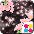 神秘樱花 Cheery Blossom Mystic