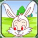 小白兔过桥
