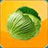 蔬果摄取量评估