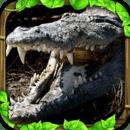 鳄鱼模拟器 Wildlife Simulator: Crocodile