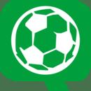 華球網logo圖標