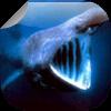 鲸鱼和鳄鱼壁纸