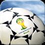 巴西世界杯2014