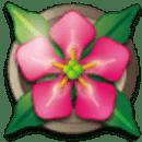 掌上花园 测试版(beta版)