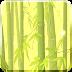 风摇竹林动态壁纸 Bamboo Forest Live Wallpaper