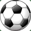 Soccer Live Wallpaper!