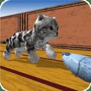 铜猫跑酷Cu Cat Dash