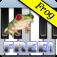 青蛙钢琴免费