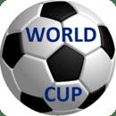 足球世界杯2014年巴西