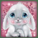 兔子的梦境壁纸
