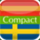 西班牙语 - 瑞典语字典