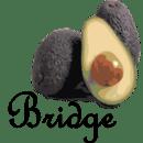Avocado My Tracks Bridge