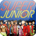 [SSKIN] Super Junior_Mr.Simple