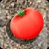 传递西红柿