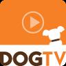 DOGTV Player