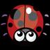 焦虑的瓢虫