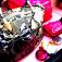 时尚手袋 Fashion Handbag