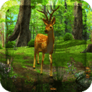 3D魔幻森林