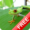 Los Animales para niños FREE