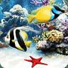我的水族馆