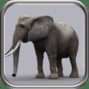 猛犸象猎人2014 Elephant Hunter