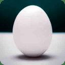 Egg Yokes!