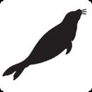 Protect Seals