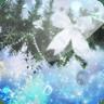 3D Christmas Beauty