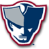 Somerset Patriots